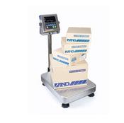 Платформенные весы AND HW-200KV-WP