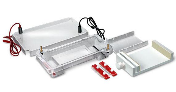 Мини-камера для горизонтального электрофореза 125х76 SE-1