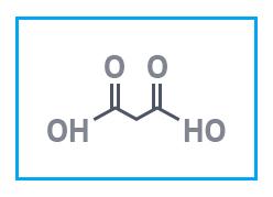 Малоновая кислота