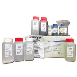 Набор для анализа кала (комплект №1, клинический анализ)
