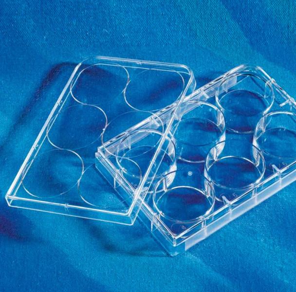Планшет культуральный 6-лунок, с крышкой, полистирол, стерильный